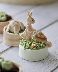 Paku Malzeme - Silikon kalıp Peter Rabbit; 7,3*7,3 cm (1)
