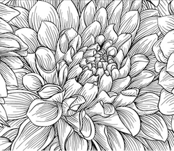 Paku Malzeme - Mesh Stencil Crystal Collection; Chrysanthemum (36*18 cm)