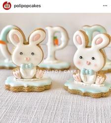 Paku Malzeme - Plastik kalıp Bunny-2; 9,0*6,5 cm (1)