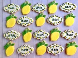 Paku Malzeme - Plastik Kalıp Yapraklı Limon; 8,8*7,2 cm
