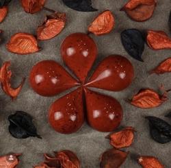 Diğer - Polikarbon Çikolata kalıp; Damla (1)